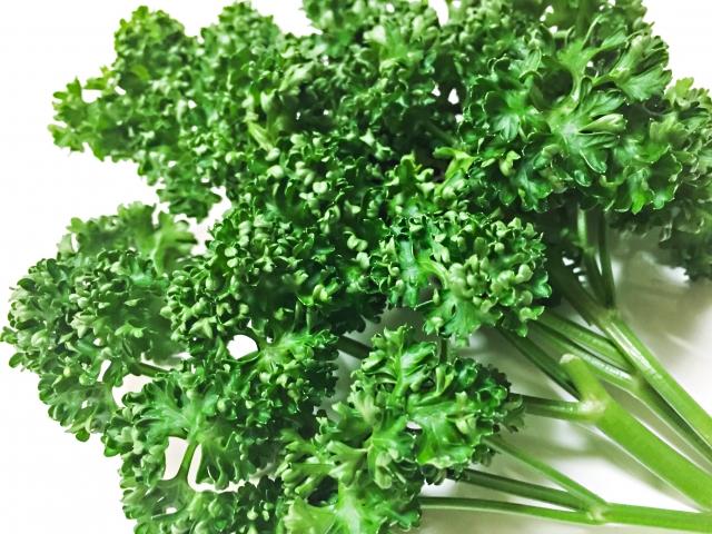 パセリの栄養素がすごい!効能や種類、保存方法|葉酸も豊富